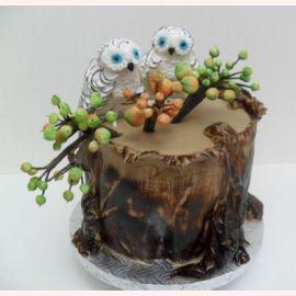 """Торт для влюбленных """"Совы"""""""