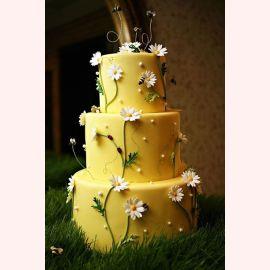 """Торт """"Пчелы на цветущих ромашках"""""""