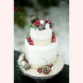 """Новогодний торт """"Шишки из леса"""""""