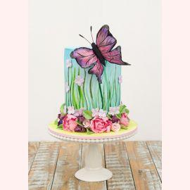 """Торт """"Прелестная бабочка"""""""