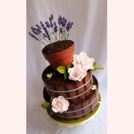 """Торт """"Цветы в горшочках"""""""